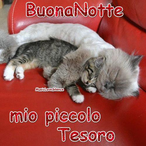 Buonanotte Mio Piccolo Tesoro – Musiclovesilence