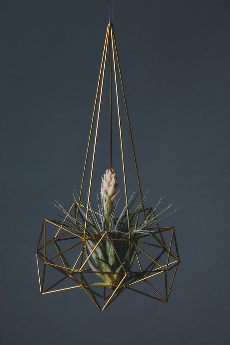 Nest (III) by Spazz Happy Line Design | €227,52 - isuun