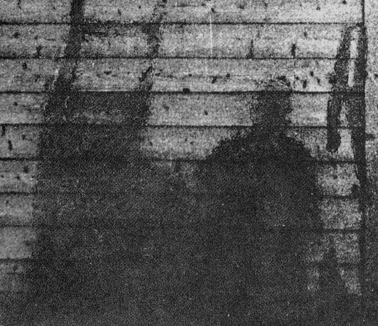 The intense heat and light of the Hiroshima and Nagasaki atomic bomb blasts left behind ghostly silhouettes of human beings whose lives were erased in an instant. These shadows are permanently etched.
