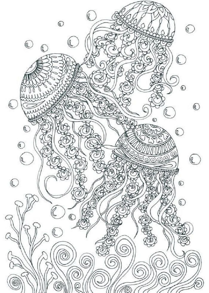Underwater Coloring Pages For Adults Summer Coloring Pages Mandala Coloring Pages Ocean Coloring Pages