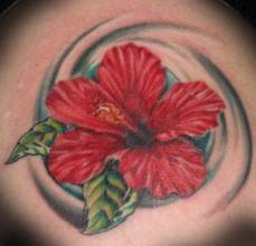 Hibiscus tattoos are a common tattoo symbol found in the Pacific. Learn about hibiscus tattoos, hibiscus tattoo designs, hibiscus tattoo meanings, and ideas.
