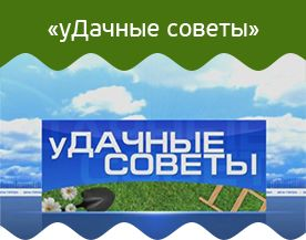 Российский садовод. №11 от 01.11.2016