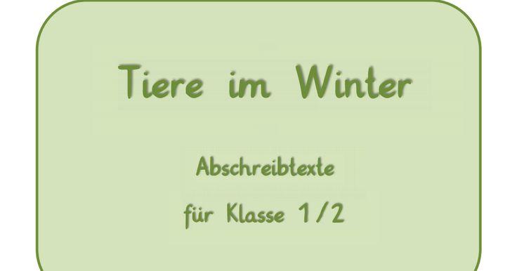 Tiere im Winter - Abschreibtexte.pdf