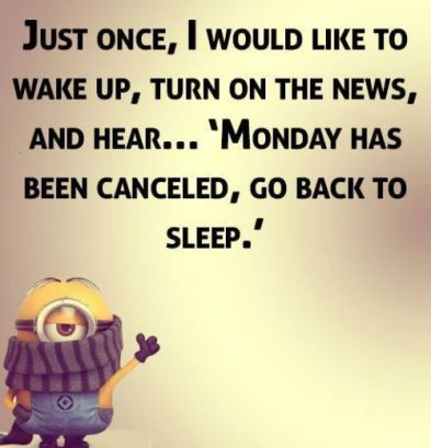 Image result for memes about monday