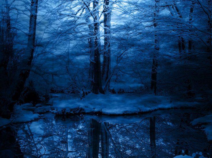 blue trees..so pretty