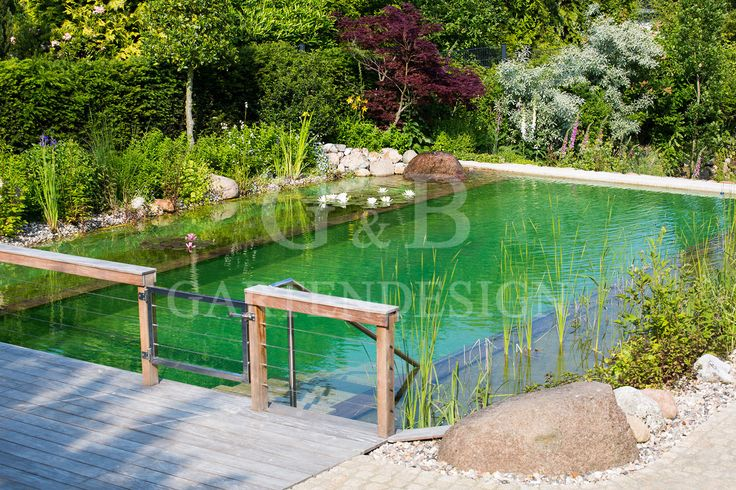 schwimmteich-badeteich-badesee-naturpool-natural-pool.jpg (1620×1080)