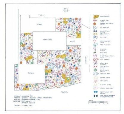 Piet oudolf google search varsovia garden pinterest for Lurie garden planting plan
