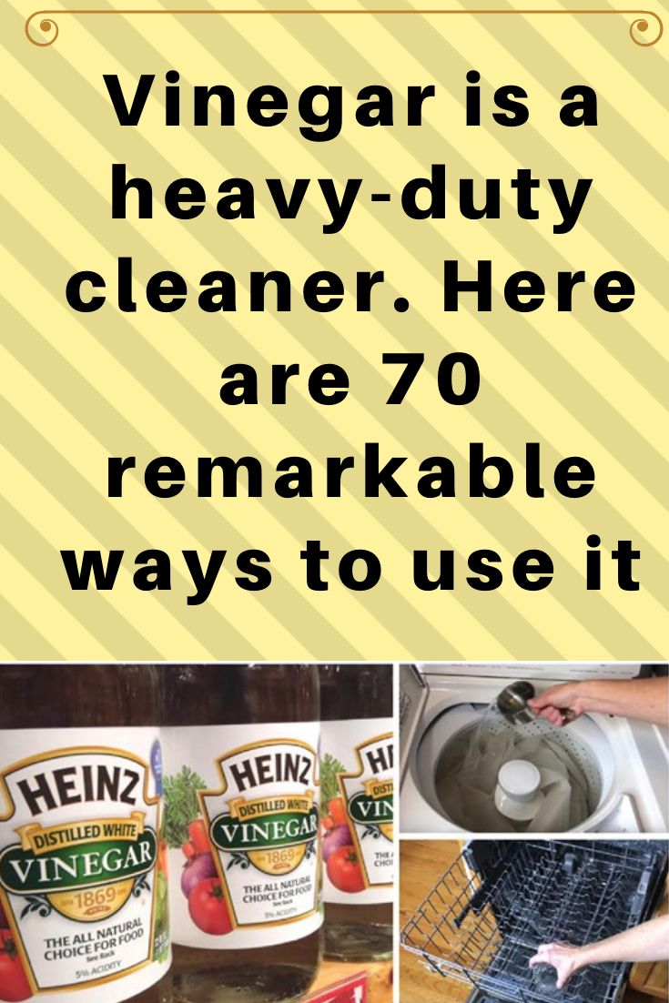 carpet cleaner heavy duty