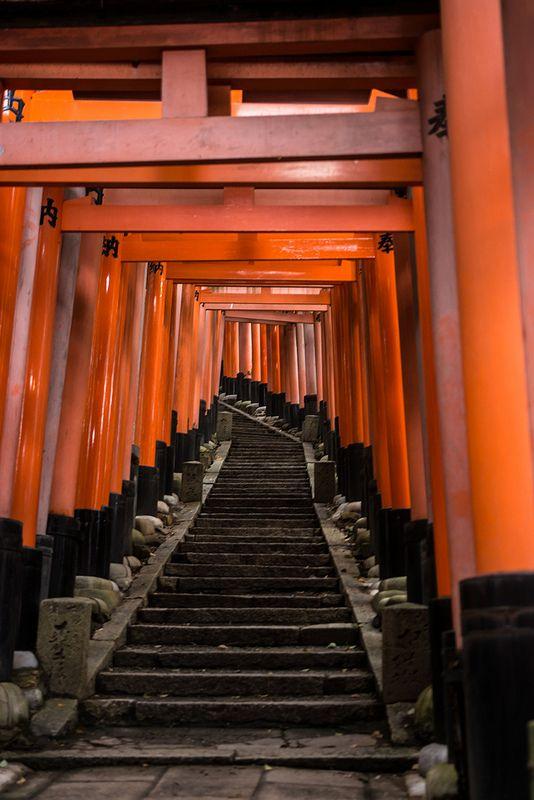 Torii in Fushimi Inari Shrine, Kyoto, Japan