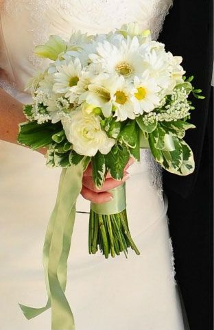 Spring daisy hand tied bridal bouquet with spray and gerbera daisies, freesia, ranunculus, stephanotis, and Queen Anne's lace