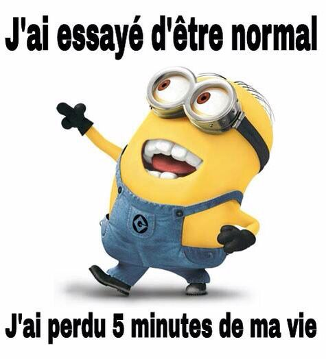 Normal ?                                                                                                                                                                                 Plus