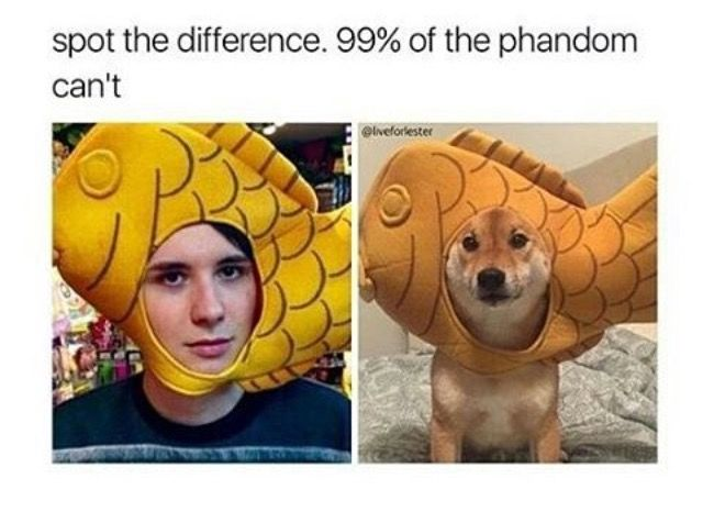 Wait, I notice something! I think I got it! The meme on the left seems a bit boarder then the other! Haha, tried to fool me!