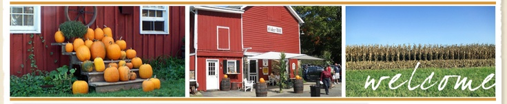 NJ Cider Mill, New Jersey, Cider Mill, Hacklebarney Farm, Chester, NJ, Apples, Cider, Cidermill, Halloween, Pumpkins, Pumpkin Picking, Cornmaze, NJ Fall Events, Holiday Pies, Homemade Pies, Bakery, Apple Pie, NJ Farms, Chester NJ Attractions, apple, Baked Goods