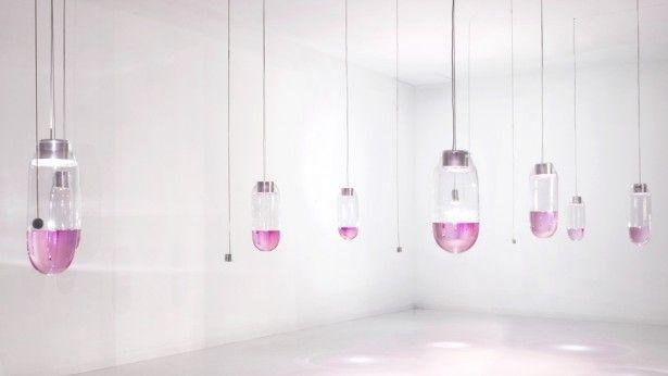 Een bijzondere lichtinstallatie van glas en gekleurd water