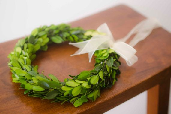 Hey, I found this really awesome Etsy listing at https://www.etsy.com/listing/183380004/8-preserved-boxwood-wreath-simple-spring