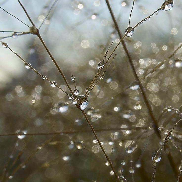 Блики by Aleksy Kirilovskiy on 500px