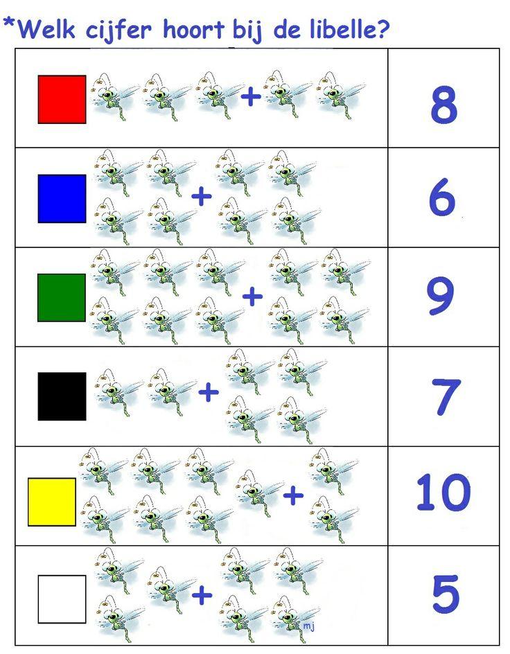 * Welk cijfer hoort bij de libelle! 1-2