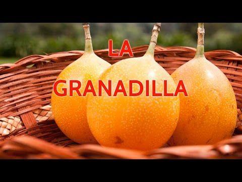 Granadilla Fruta, Propiedades y Beneficios de la Granadilla - YouTube