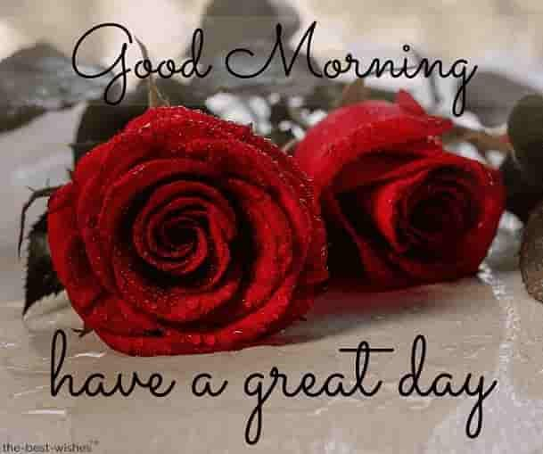 Top 134 Good Morning Wishes With Rose Best Hd Images Good Morning Beautiful Gif Morning Wish Good Morning Roses