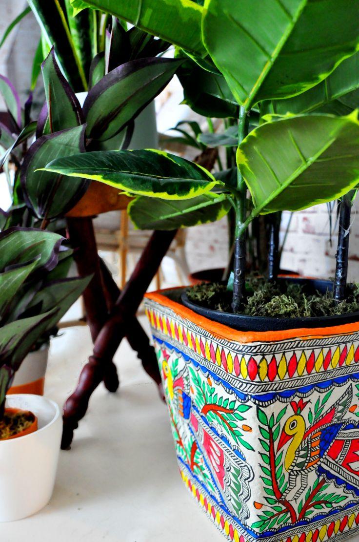 Tips To Build An Indoor Green Corner | The Desi Wonder Woman