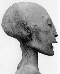 "BIOLOGICAL MOTHER OF KING TUT, is the mummy called ""The Younger Lady"" of KV35."