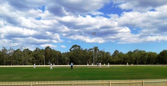 Cricket at Sydney Park