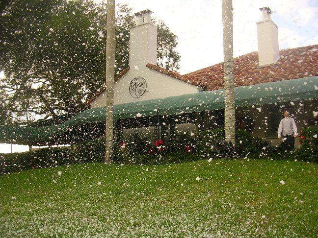 snow machine rental sarasota