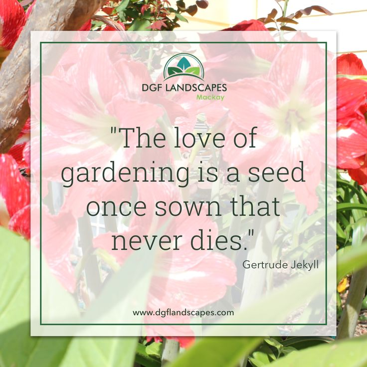 """""""The love of gardening is a seed once sown that never dies."""" - Gertrude Jekyll #TuesdayTruth"""