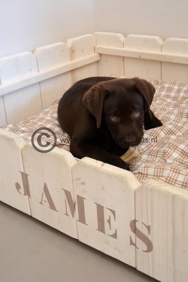 Steigerhout hondenmand model Diesel