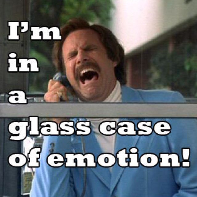 Love this movie!! Can't wait for the second one!Ron Burgundy, Glasses Cases, Funny Movie Quotes, Favorite Quotes, Freshman Years, Law Schools, Comedy Movie, Anchorman, Will Ferrell