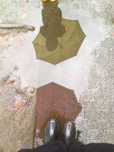 Rainy Days Reflection.