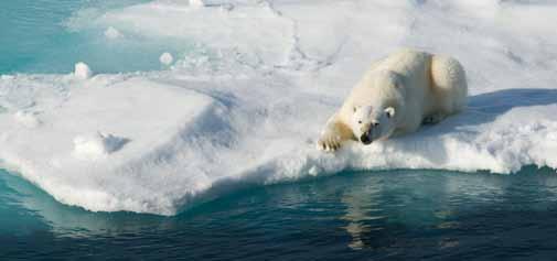 Baffin Island, Nunavut Canada: http://ow.ly/cfFso