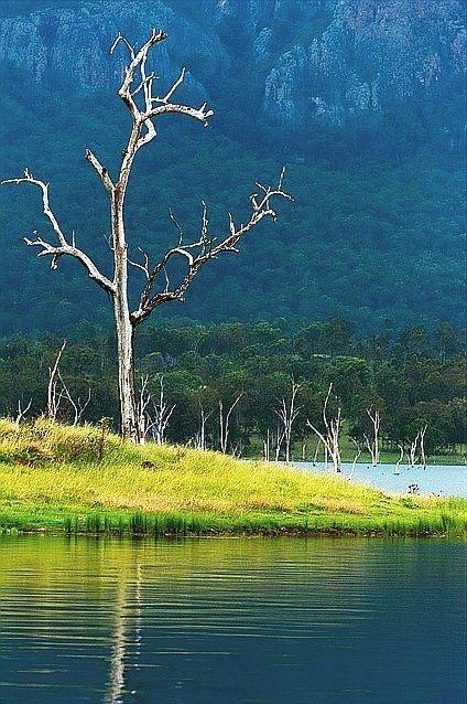 Lake Moogerah, Queensland, #Australia