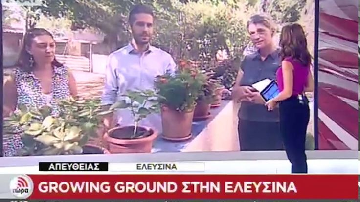 Growing Ground @ Skai TV