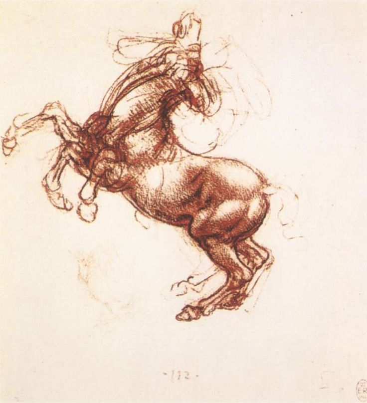 Rearing Horse by da Vinci was done between 1483-1498. It is a sketch done in red chalk. It was a sketch created by him in Florence and it is now in the Royal Collection, Windsor Castle, London, UK