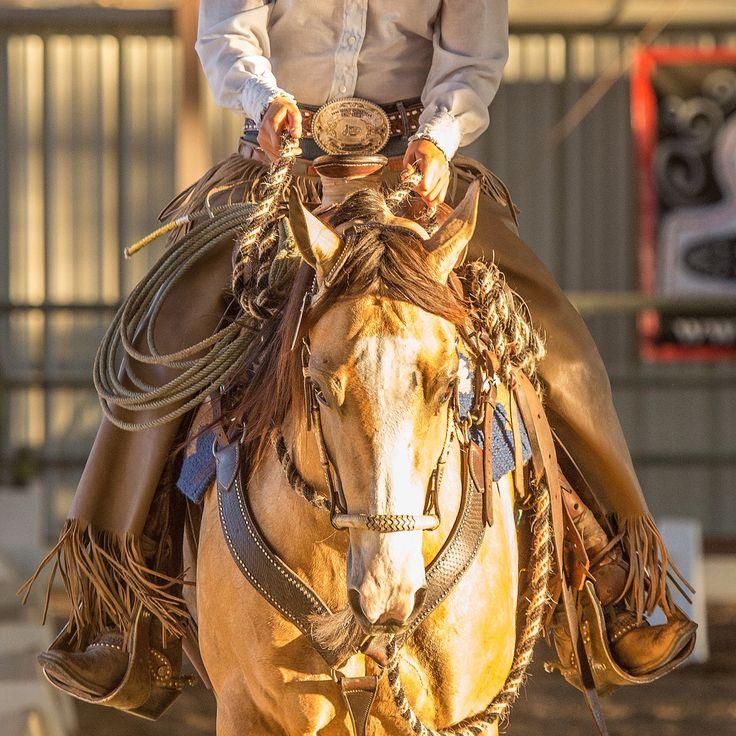17 Best images about Horses: Cowboy dressage on Pinterest ...