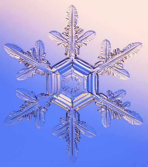 Real Snowflake Pictures | snowflakes. But they have nothing in common with the real snowflakes ...