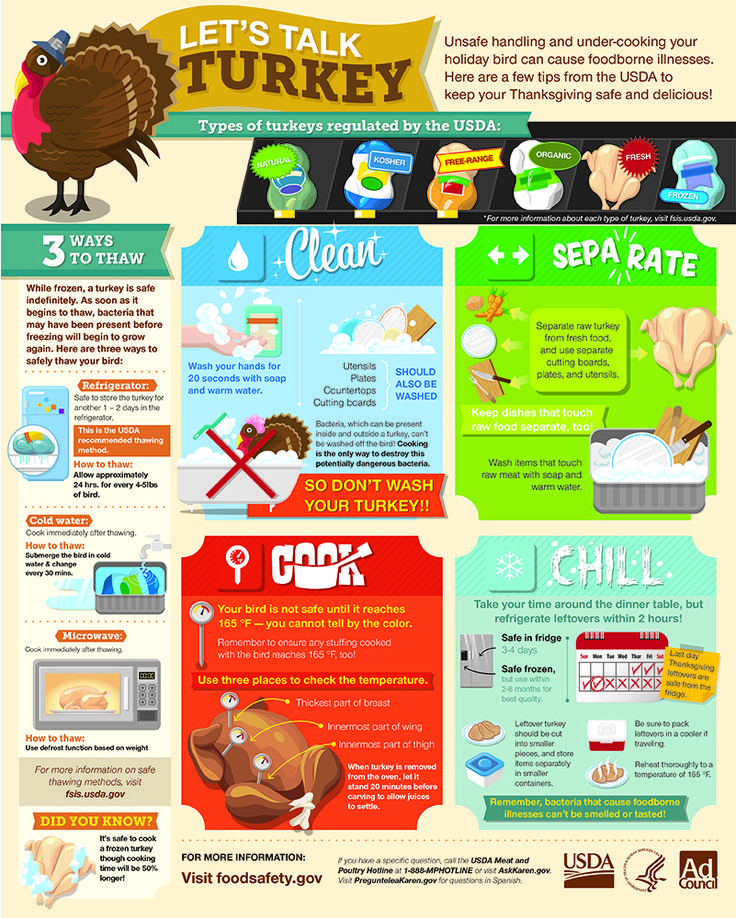 Thanksgiving Food Safety Infographic