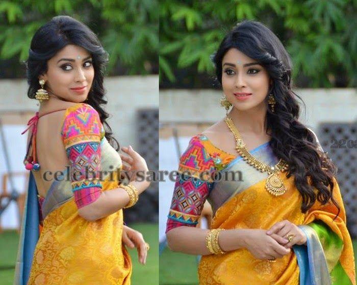 Shriya Saran 3/4th Sleeves Blouse