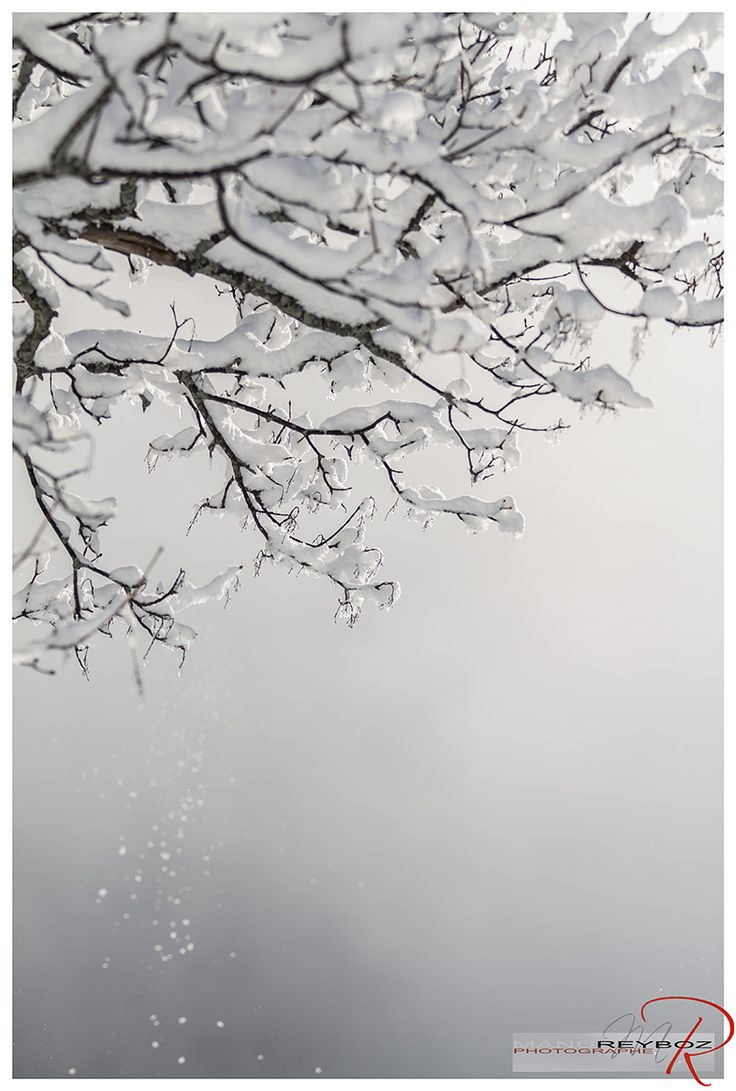 42 best stations de ski hiver 2012 2013 images on pinterest ski skiing and french alps. Black Bedroom Furniture Sets. Home Design Ideas