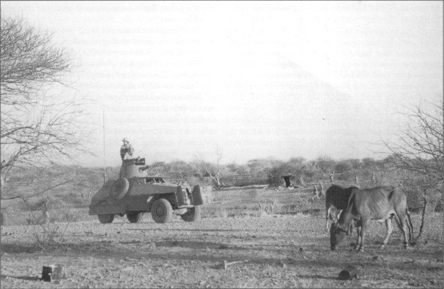 A South African Armoured Car, Mk II, at El Gumu, where the South Africans captured an enemy outpost. (Photo: SANMMH)