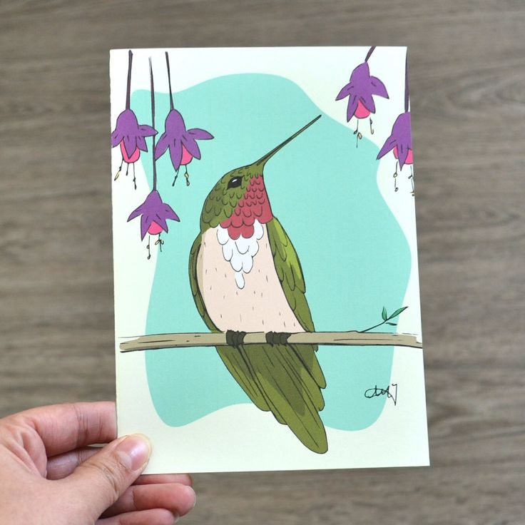 Greeting Card for any occasion, Illustrated Hummingbird Card, Blank Inside by AMTaylorArt on Etsy https://www.etsy.com/ca/listing/294143803/greeting-card-for-any-occasion