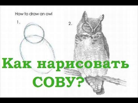 Как нарисовать сову за 10 минут? (How to draw an Owl?) - YouTube