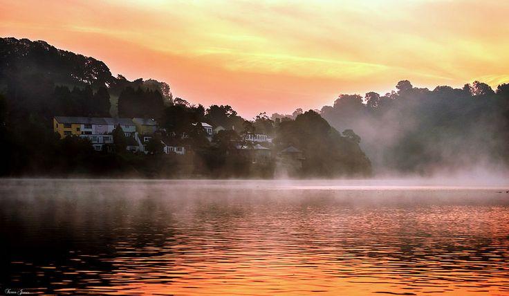 Morning Mist Stoke Gabriel | Flickr - Photo Sharing!