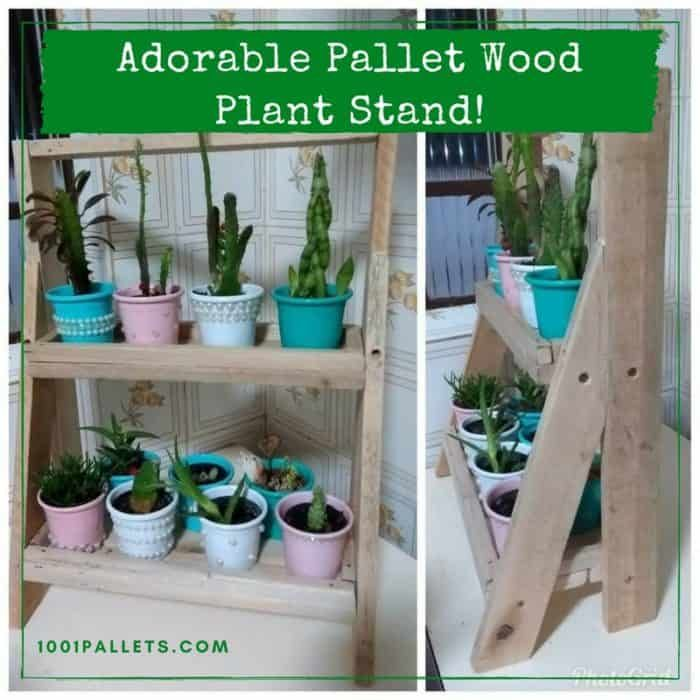 Build A Charming Little Indoor Plant Stand Using Pallets!