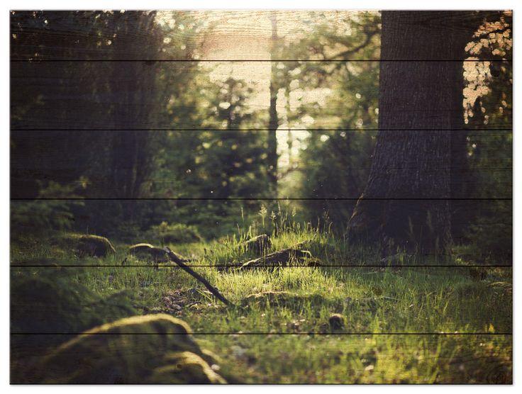 Dit tuinschilderij is gespannen op een geimpregneerd houten frame en voorzien van een bos op houtprint. Het tuinschilderij is 79cm breed en 59cm hoog. Geschikt voor bevestiging op stenen muren en houten schuttingen door middel van een kunststof ophangoog in het frame. Geimpregneerde houten lijst omspannen met Bizonyl 450gr/m2 brandvertragend.