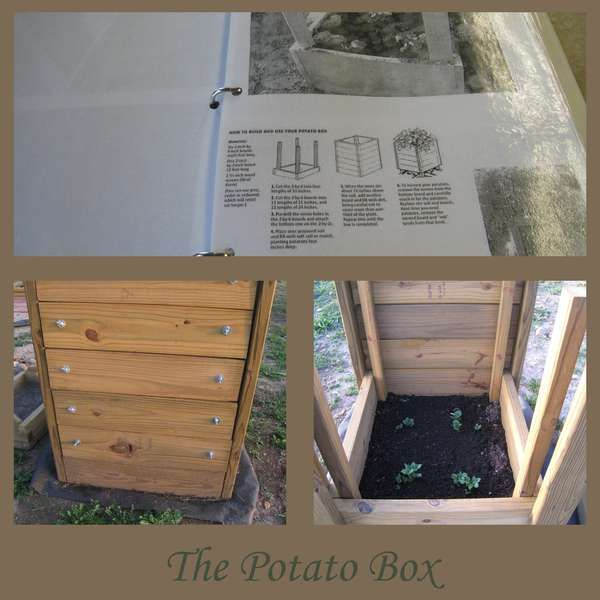 potato planter bag instructions