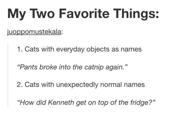 Naming them is just the best thing ever. | 17 Funny Tumblr Posts For People Who Are Slightly Obsessed With Animals