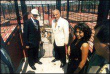 Yedikule Hayvan Barınağı Açılış Görüntüleri   Fatih Belediyesi Yedikule Hayvan Barınağı