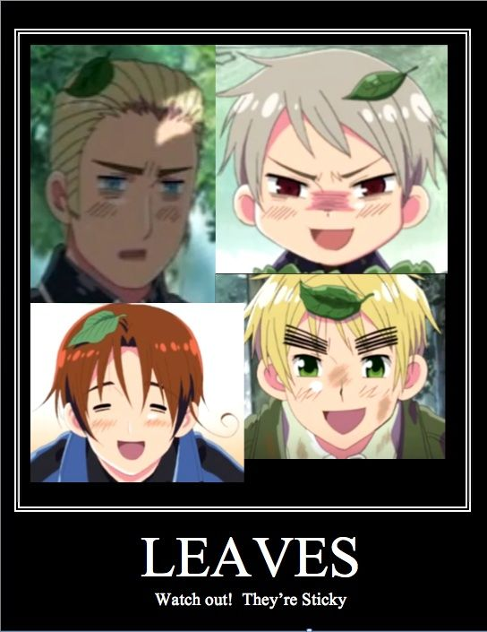Every time I watch Hetalia I wonder about this...